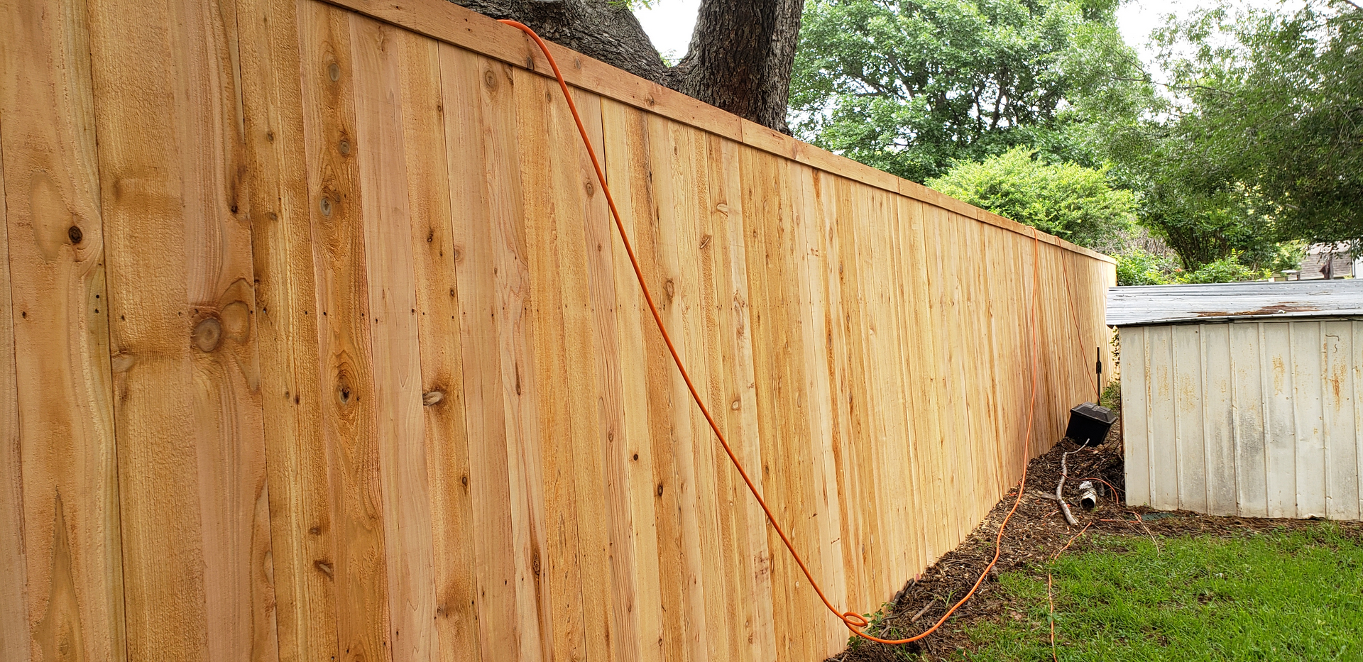 8ft Cedar wood fence replacement